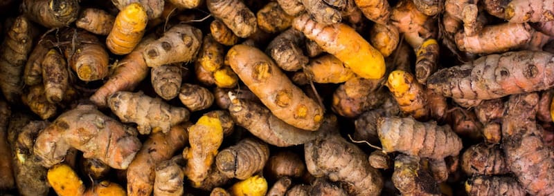 Turmeric Root Health Benefits