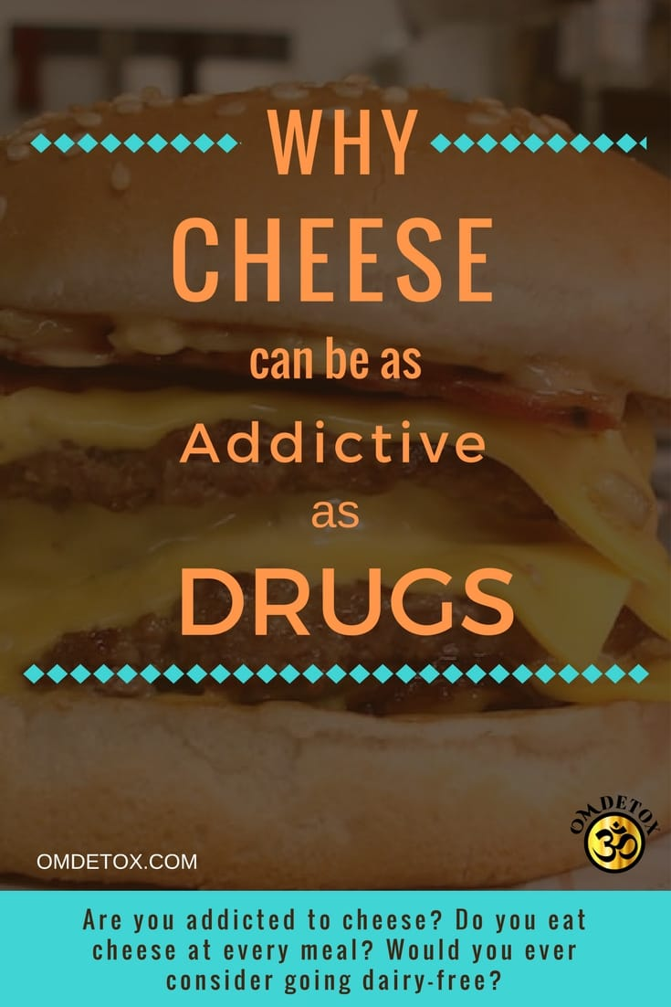 Cheese is addictive