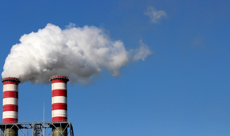 Fasting from Pollutants
