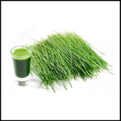 OMDetox Green Superfood supplements - wheatgrass