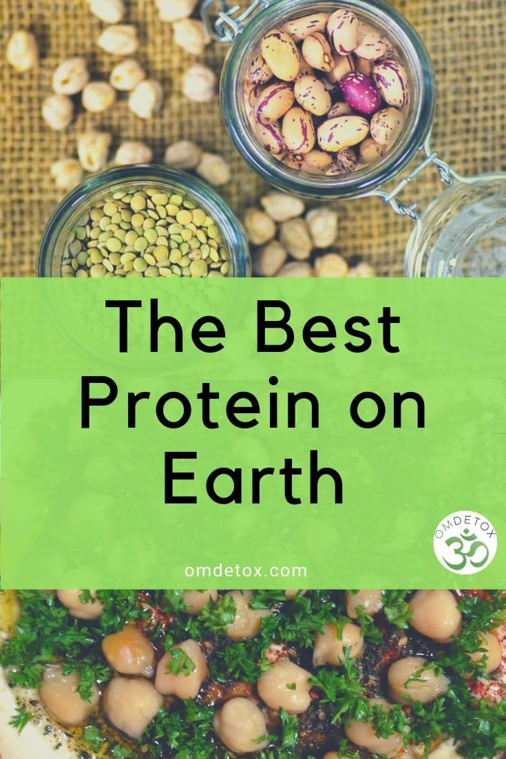 What is the best protein on Earth? Beans are vegan and healthier